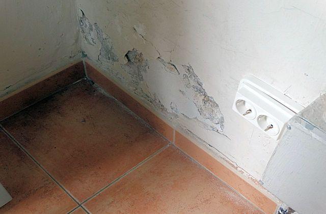 humedad en pisos de alquiler