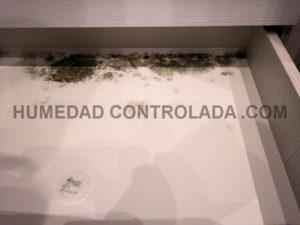condensación y mala calidad de aire interior