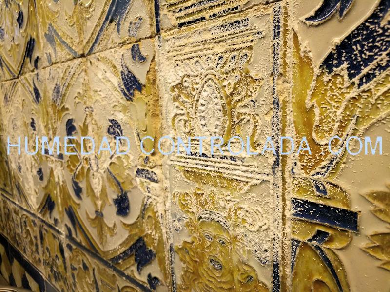 Las sales provocan degradación en los muros con humedad
