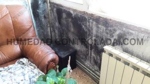 desinfección con ozono en casa
