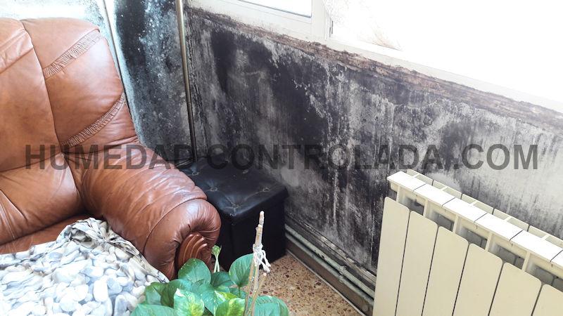 humedad de condensación y mohos en casa