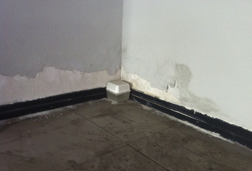 Quitar la humedad en paredes. Un problema común. Elije bien la solución a la humedad.