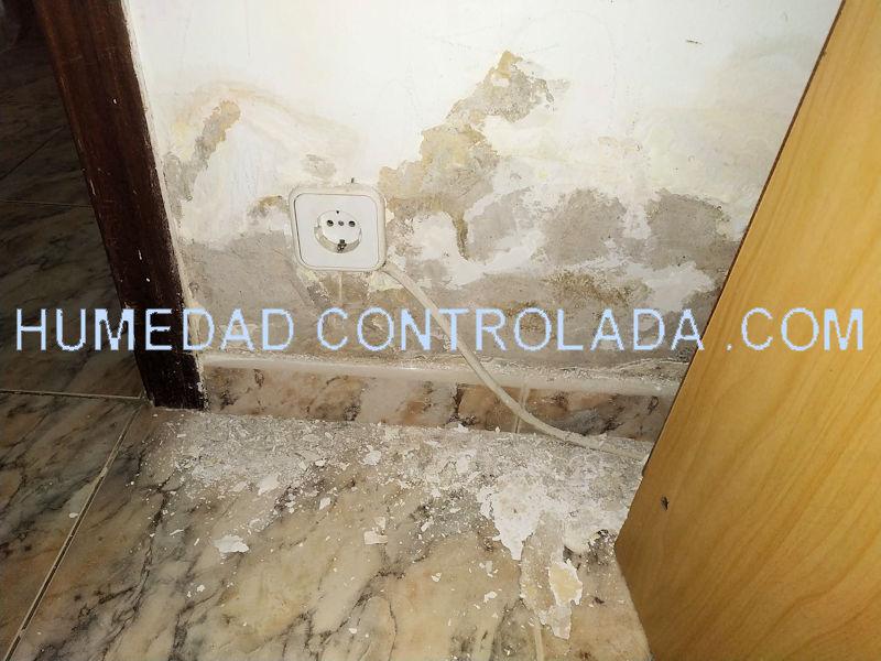 Humedad en paredes con soluciones para ahorrar dinero antes de rehabilitar