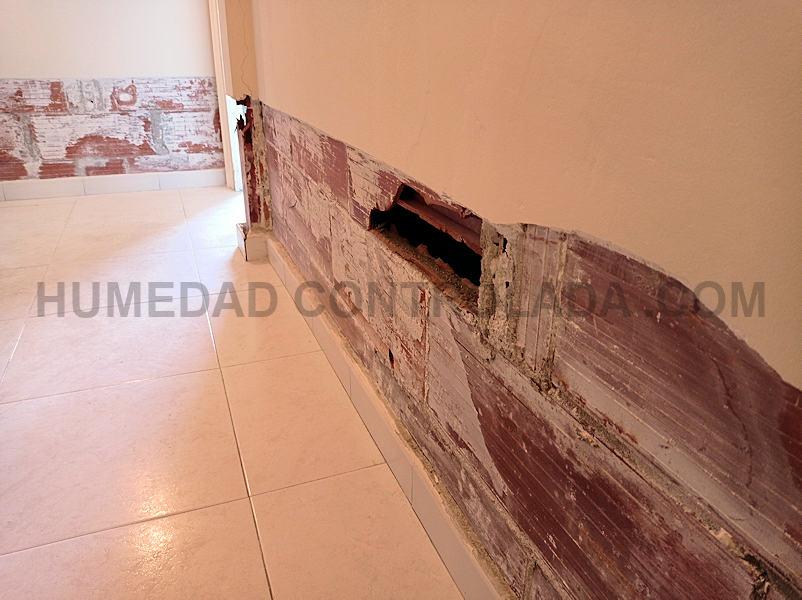 rehabilitación de muros afectados por humedad